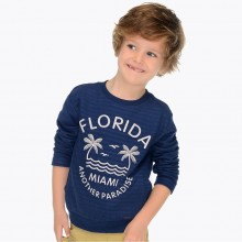 Boys Printed Pullover (3418)