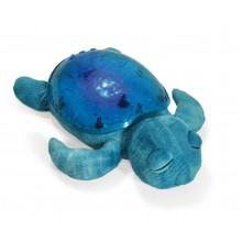 Tranquil Turtle - Aqua