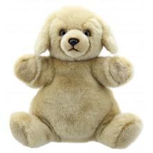 Cuddly Tumms - Labrador